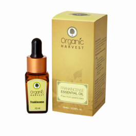 Organic Harvest Frankincense Essential Oil, 10ml