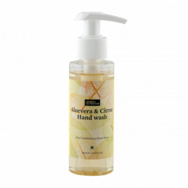Bipha Ayurveda Aloevera & Citrus Hand Wash, 90ml
