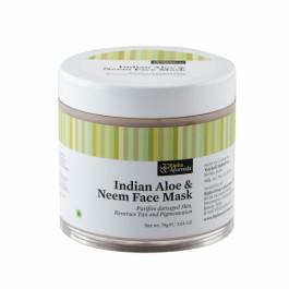 Bipha Ayurveda Indian Aloe & Neem Face Mask, 75gm