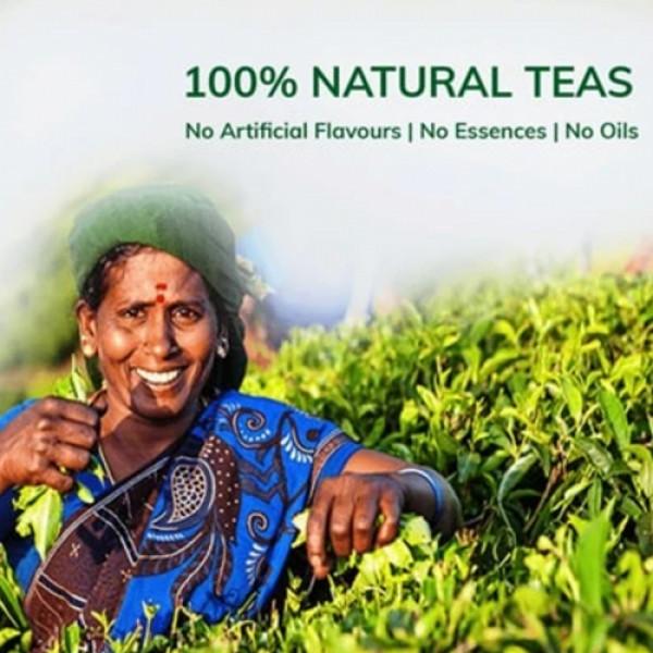 Teacurry Moringa Green Tea, 30 Tea Bags