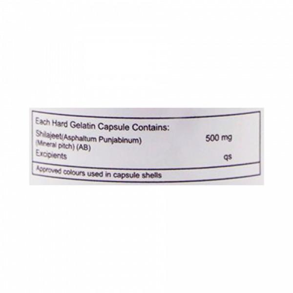 Healthvit Shilajit Powder 500mg, 60 Capsules