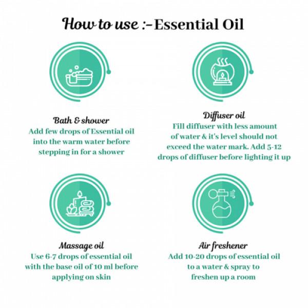 Sage Apothecary Cedarwood Essential Oil, 10ml