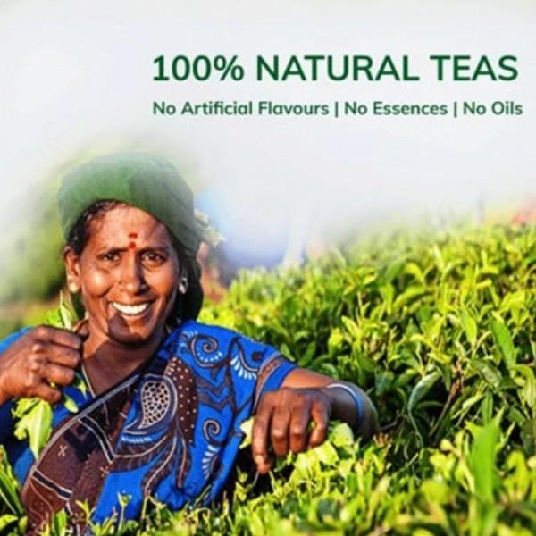 Teacurry Rose Green Tea, 30 Tea Bags