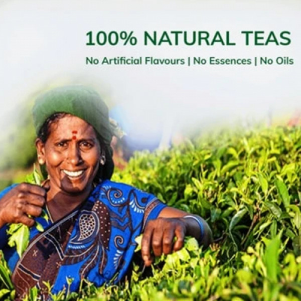 Teacurry Rose Green Tea, 60 Tea Bags