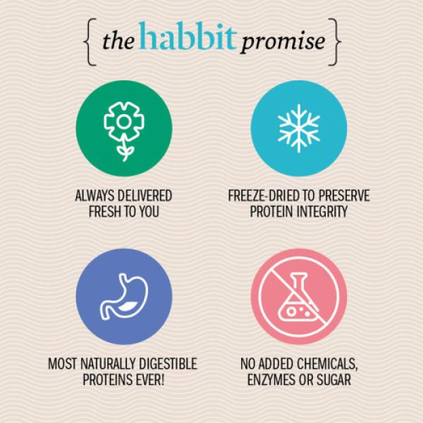 Habbit Green Vegan Pea Protein Strawberry Feels Powder, 210gm
