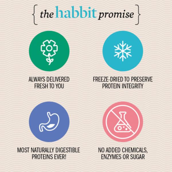 Habbit Apex Whey Isolate Protein Vintage Vanilla Powder, 450gm