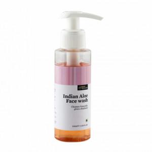 Bipha Ayurveda Indian Aloe Face wash, 90ml